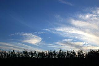 Blue skies again